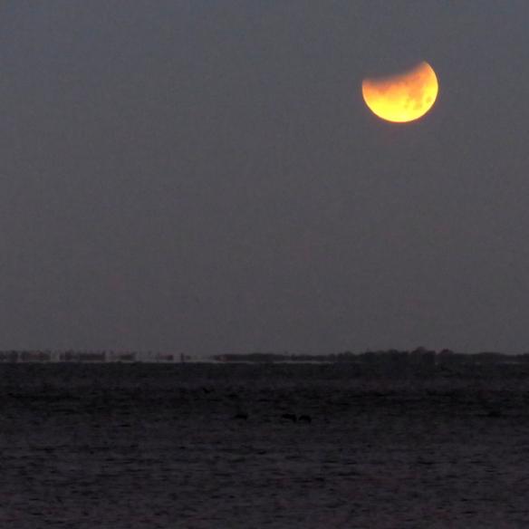 LunarEclipse640